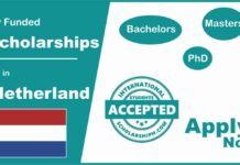 Scholarships in Netherlands (Fully Funded Netherlands Scholarships))
