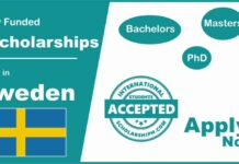 Scholarships in Sweden for International Students